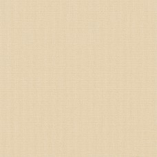 Sample: Blackout Clotted Cream- Extra Wide