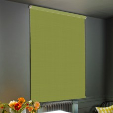 Dim-Out Leaf Roller Blind