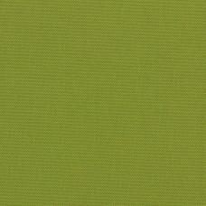 Sample: Blackout Lime